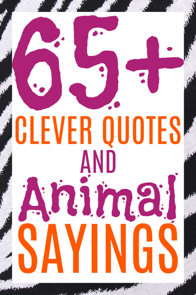 short and simple clever quotes and cute sayings for animal theme cards