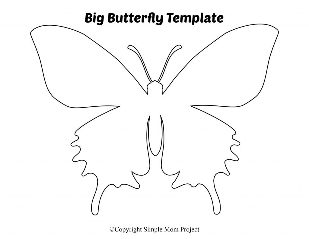 image about Butterfly Template Printable called Cost-free Printable Butterfly Templates - Basic Mother Task