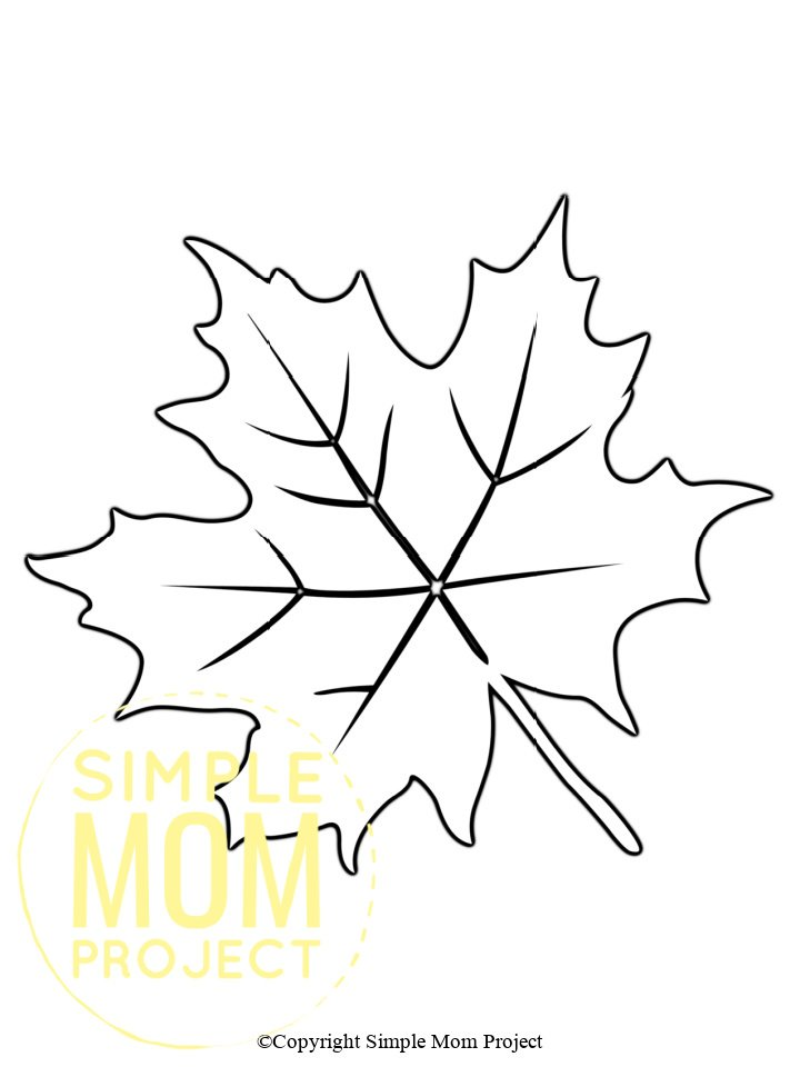 Printable Autumn and Fall Leaf Template, Stencil and Pattern