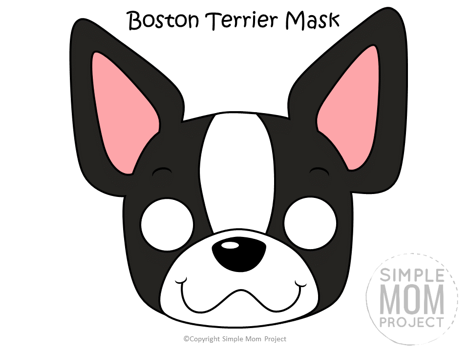 Free Printable Boston Terrier Dog Face Mask Colored