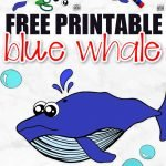 Looking for a fun summer craft or maybe a greeting card? Click now to print the free blue whale template and make this adorable blue whale craft. He is also the perfect whale to teach the about ocean animals! This blue whale is perfect for kids of all ages, including preschoolers and toddlers! #BlueWhaleCrafts #WhaleCrafts #OceanAnimalCrafts #OceanAnimals #SimpleMomProject