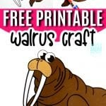 Every day moms can teach their kids the letter W with this easy printable arctic walrus craft! With a free walrus template, this walrus craft is perfect for kids of all ages including preschooler, toddlers and kindergartners #walruscraft #arcticanimals #arcticanimalcrafts #SimpleMomProject