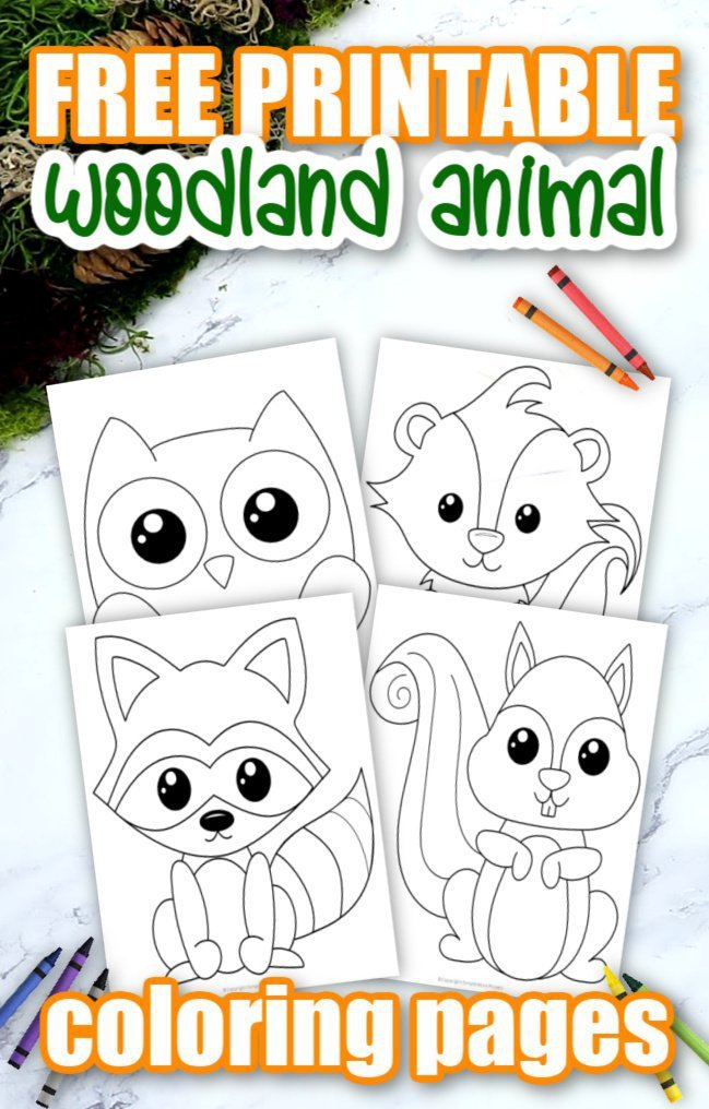 Add some sparkle to your forest themed crafts with these cute and free printable woodland animal coloring pages. From skunks to deers, hedgehogs and more, these simple coloring pages are great activities, ideal for preschoolers or kindergartners as a fun way to learn about the beautiful creatures of the forest. Click here to grab your free printable Woodland Animal Coloring pages today! #WoodlandAnimalcrafts #WoodlandAnimalColoringpages #Forestthemecraftsforkids #Forestanimalcoloringpages #SimpleMomProject