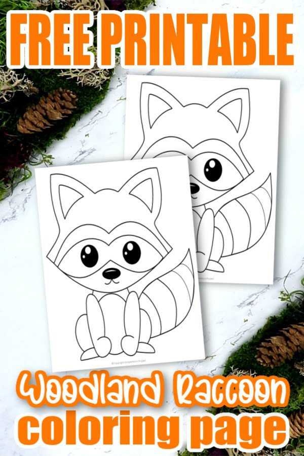 Join in the fun of forest animal coloring sheets with this super easy and free printable raccoon coloring page. This cute little woodland animal makes an adorable addition to your kids coloring book or even as an art project for preschool or kindergarten. Click here to get your free raccoon printable and watch your kids create their own Chester the Raccoon designs. #Raccooncoloringpages #Forestanimalcoloringpages #Forestanimals #Coloringpagesforkids #SimpleMomProject