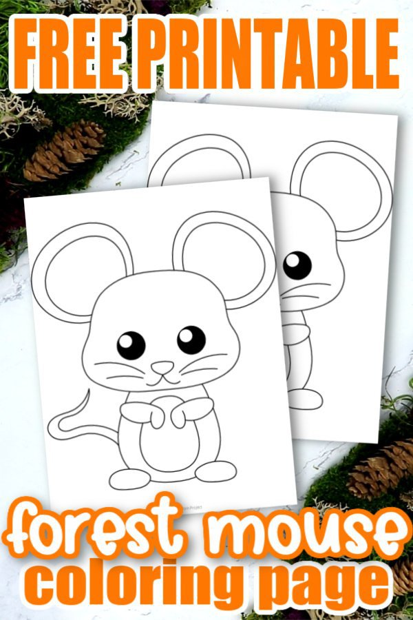 Are you looking for an easy forest themed preschool coloring print out for your kids? Our cute and free printable forest mouse coloring page is an ideal addition to your kids forest craft activities or their woodland animal coloring book. Preschoolers and toddlers love fun art projects so this would be a winner at preschool for sure. Click here to grab your baby forest mouse coloring page today! #Mousecoloringpage #Babymousecoloringpages #forestanimalcoloringpages #forestanimals #SimpleMomProject