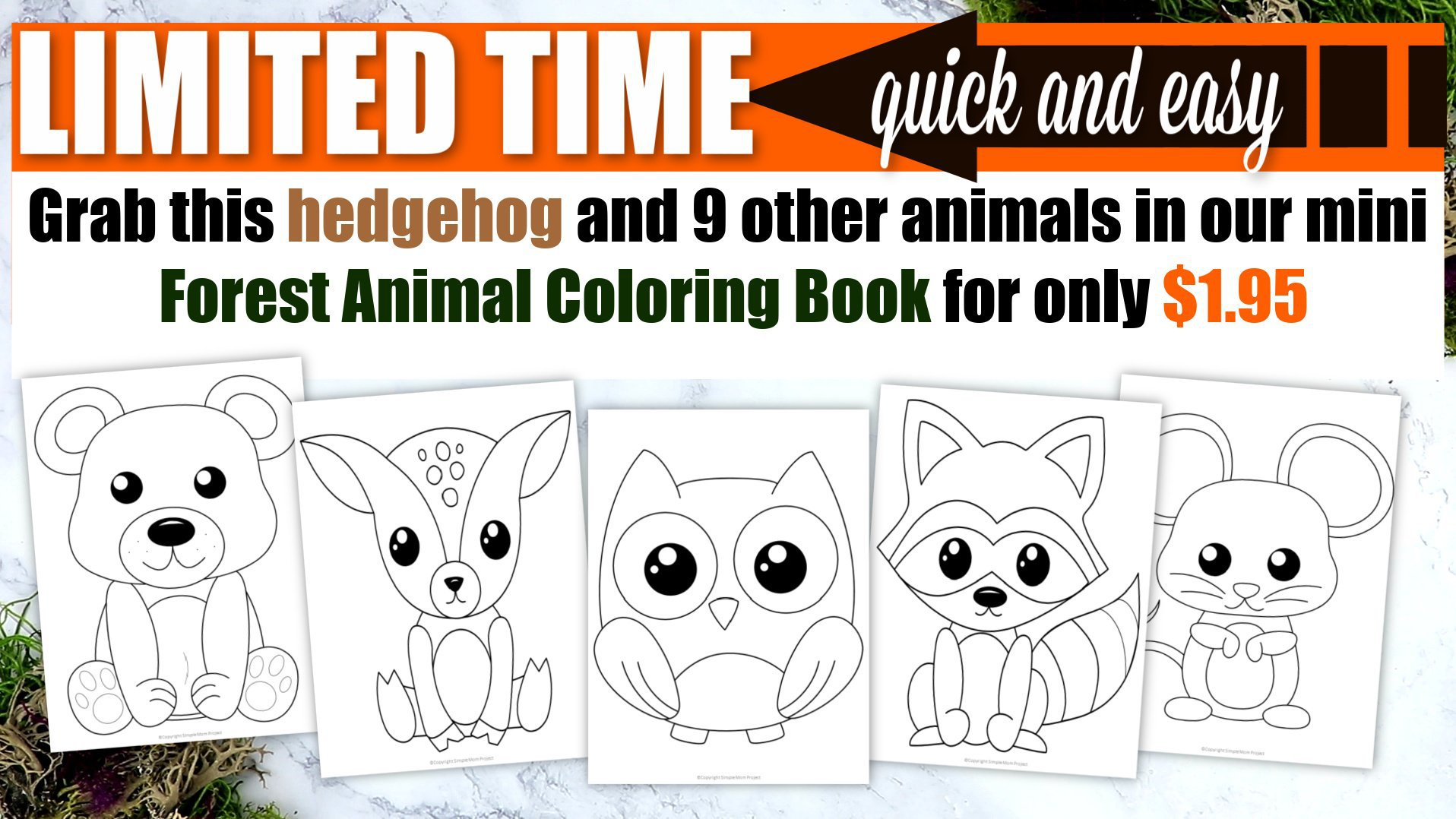 Printable Woodland Forest hedgehog Coloring Page for Kids Preschoolers Toddlers and kindergartners