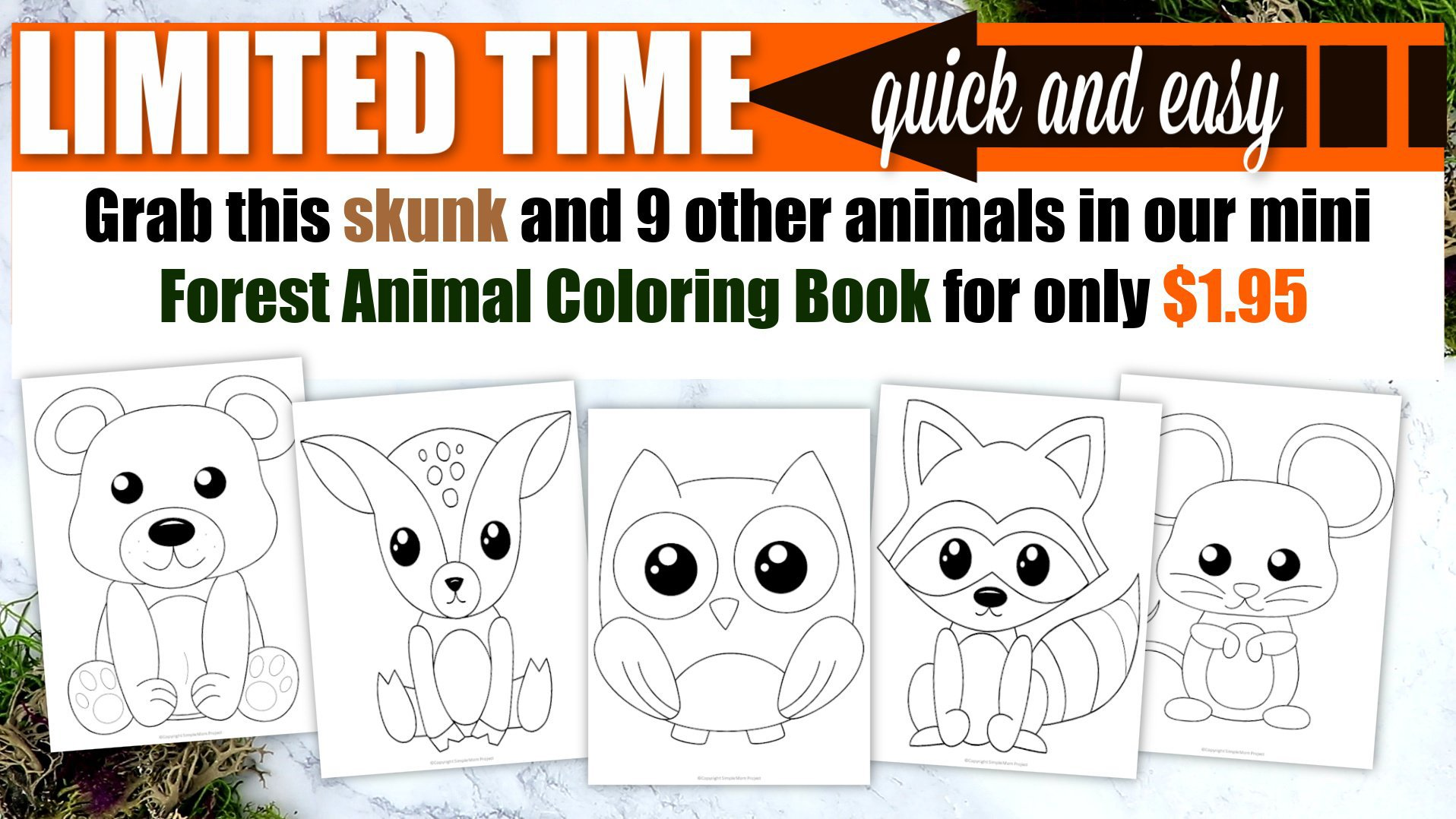 Printable Woodland Forest skunk Coloring Page for Kids Preschoolers Toddlers and kindergartners