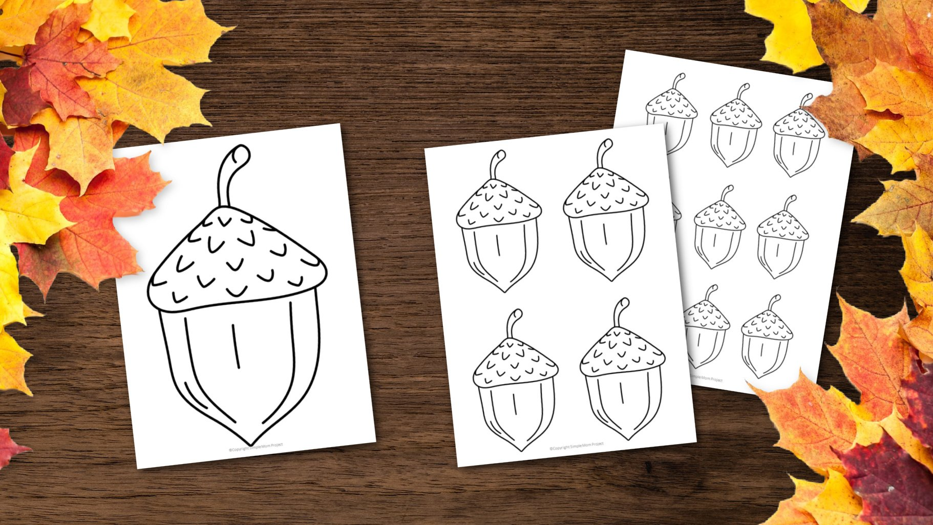 free printable fall acorn template for fall crafts