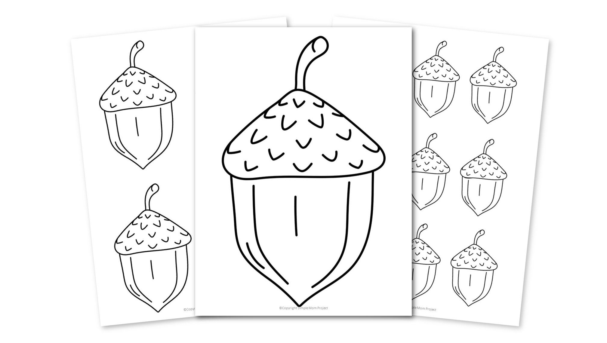 Free Printable Acorn template for acorn and fall crafts for kids