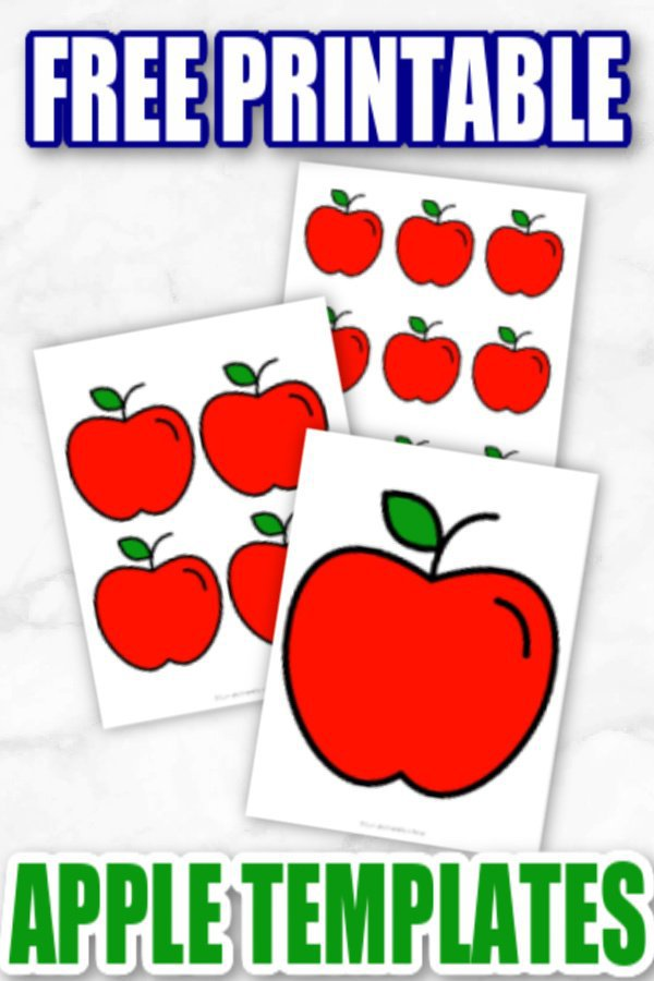 Are your kids looking for nice bright red & green apple templates for their spring time crafts? Here's some easy & free printable apples templates for them to use in both large and small sizes with both red & green apple designs available. What a great way to make simple fruit for your diy apple tree. Click here to grab your free printable red & green apple templates today! #Redappletemplates #Redappleprintables #Greenappletemplates #Greenappleprintables #Appleprintables #SimpleMomProject