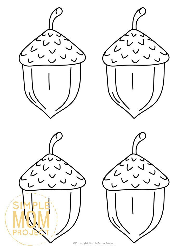 Free Printable Large, Medium and Small Acorn Templates ...