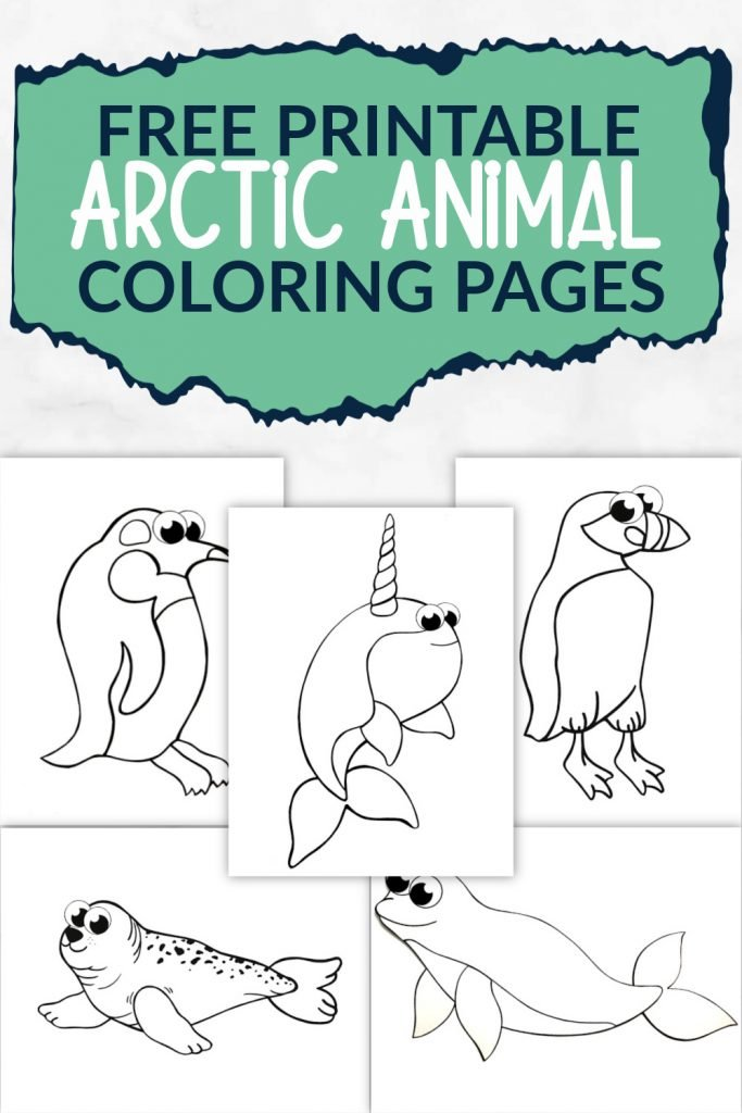 Free Printable Arctic Animal Coloring Pages - Simple Mom Project