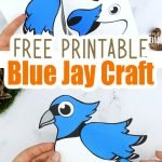 Here's a cute & free printable Blue Jay Craft for your kids. As one of the most beautiful birds in the garden, this Blue Jay craft makes a simple cut & paste art project for toddlers, preschoolers or kindergartners. Want to add some fun to homeschooling? This diy, paper Blue Jay craft is a colorful way for your kids to learn the letter J, while showing you how to make a gorgeous Blue Jay! Grab your fun & free printable Blue Jay craft today! #Bluejaycrafts #BlueJayprintable