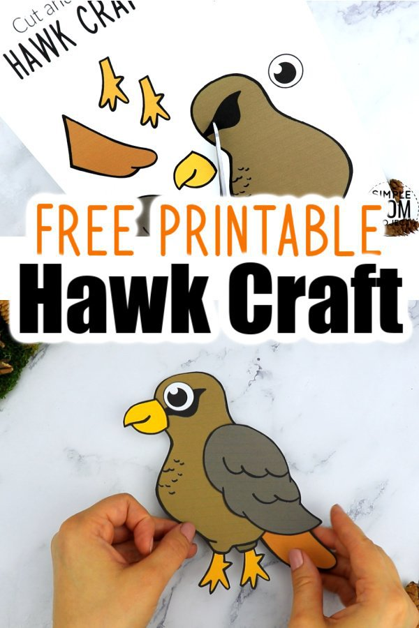 Your Kids can soar with the birds doing this free printable paper Hawk Craft. With easy to follow, step by step instructions, this diy Hawk craft makes a great idea for a wall decoration or a craft activity for toddlers & preschoolers. Kindergartners have even used them as coloring pages as well, so grab your free printable, cut & paste Hawk Craft today and watch as your kids soar with the birds in their craft creations! #Hawkcrafts #Birdcraftsforkids