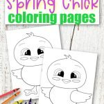 These cute and free printable spring chick coloring pages are great for kids of all ages; including preschoolers, toddlers and big kids - adults! Use them in your family worship or have fun coloring him on a rainy spring day! #BabyChickColoringSheet #SimpleMomProject