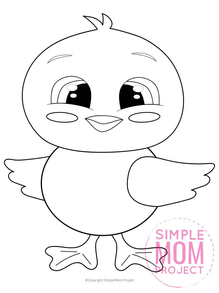 Spring Chick Coloring Page For Kids