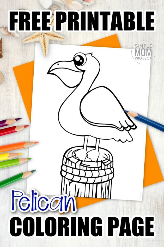 Pelicans are known to be found around Louisiana but can also be spotted in Australia. We decided it would be fun to add this brown pelican bird drawing to our ocean theme art projects. Click and download this free printable pelican sketch coloring page today! Kids of all ages will love him, including preschoolers and toddlers! #PelicanColoring #BirdColoring #SimpleMomProject