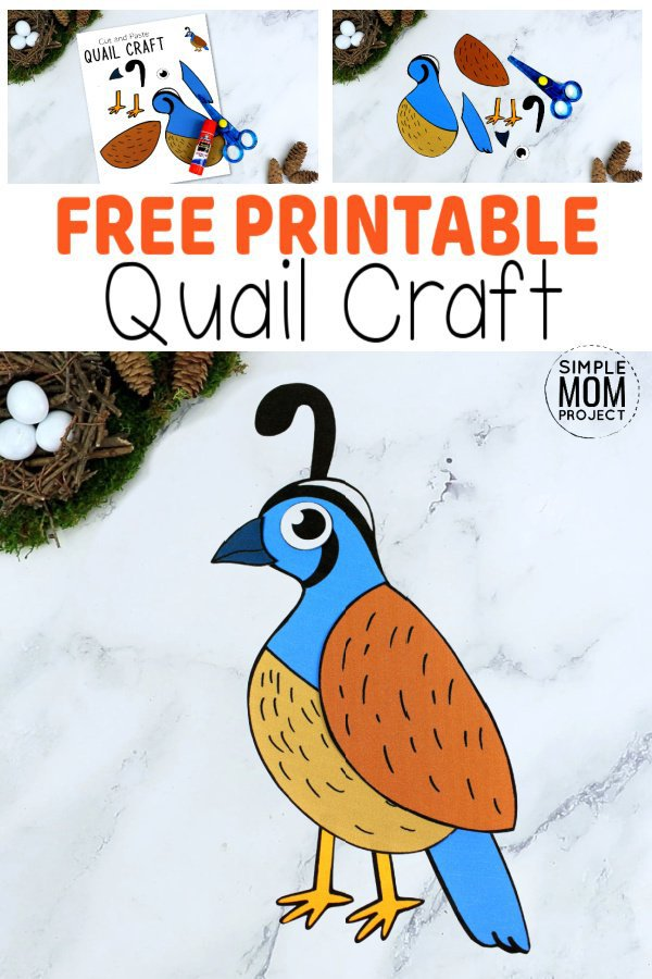 How about this cut & paste Quail craft for a fun way for your kids to learn the letter Q! With free printable templates, this Quail craft makes an ideal homeschool or Sunday school craft activity or an art project for toddlers, preschoolers or kindergartners! With winter just around the corner, it's an ideal time to grab your free cut & paste Quail craft templates & watch as your kids create beautiful paper bird crafts for your home. This is also a great way to teach about the book of Exodus, manna and Moses! #Quailcraftsforkids #PaperQuailcrafts