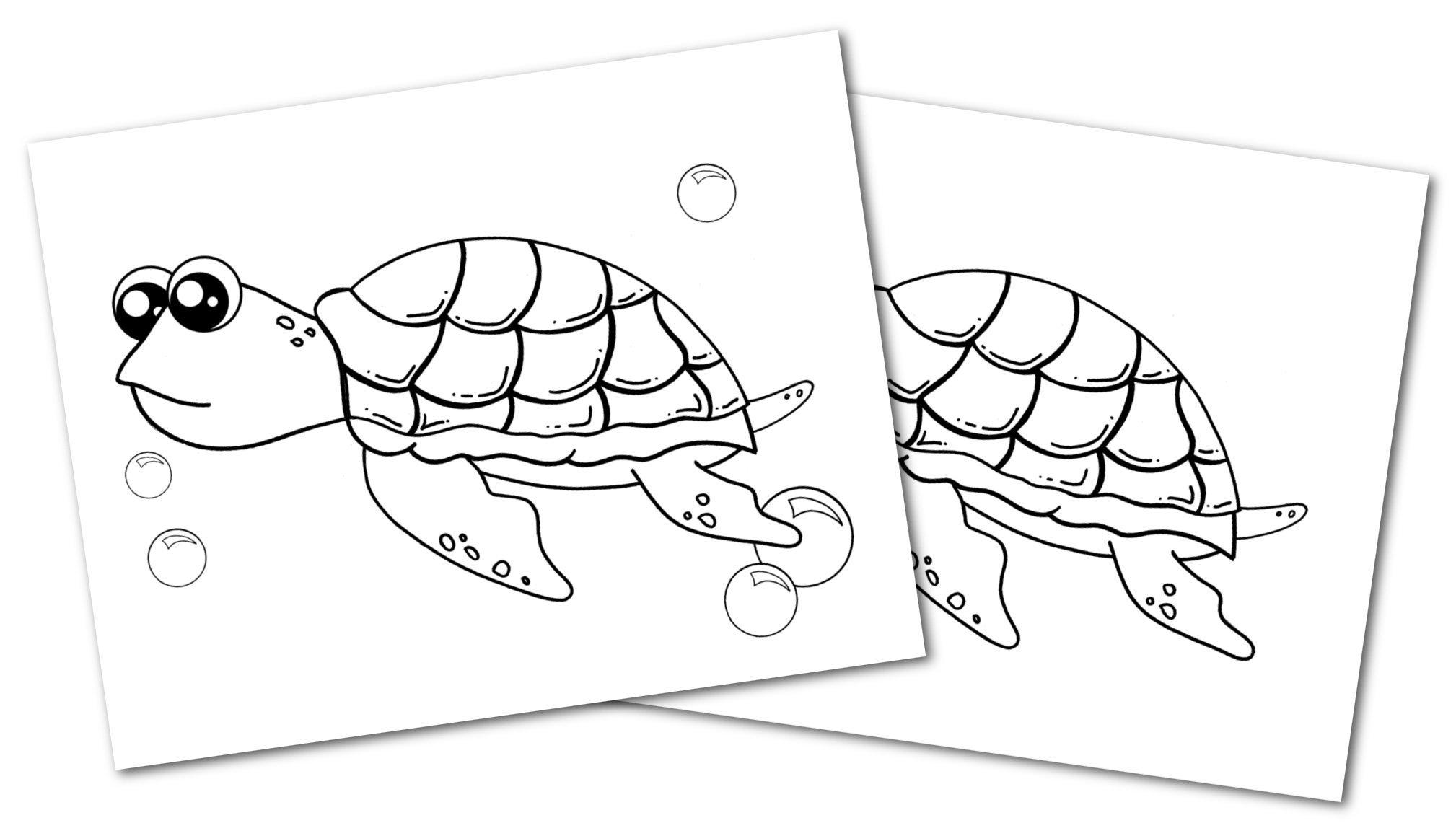 Free Printable Turtle Ocean Animal Convertkit for Toddlers, Kids and Preschoolers