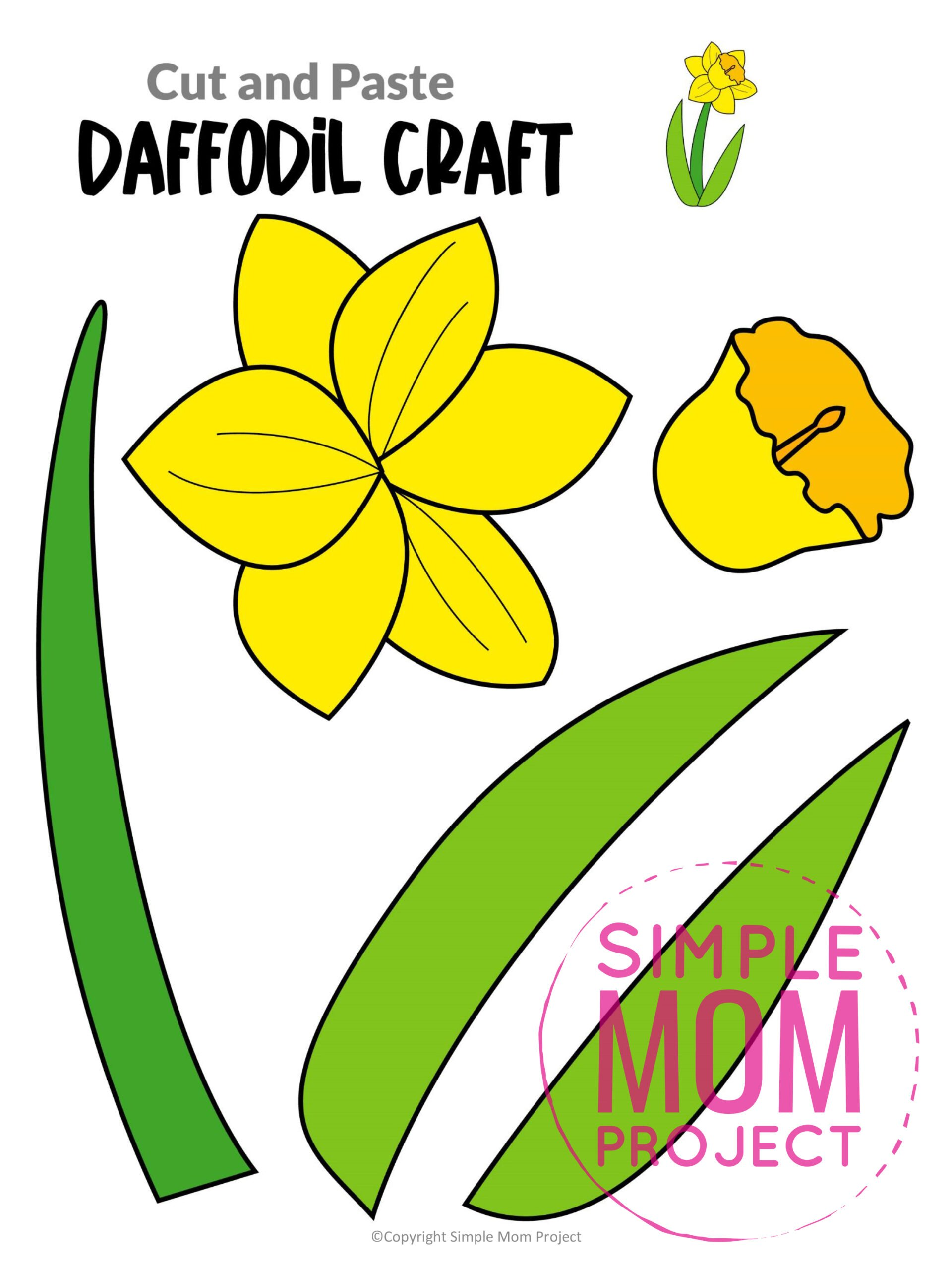Printable Daffodil Flower Craft template for kids, Daffodil craft for toddlers and Daffodil craft for kindergartners