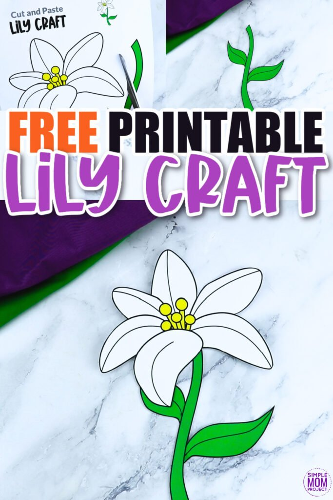 Are you looking for a fun lily flower craft to do with your kids? This spring lily flower template is a perfect craft to do with your kindergartners, preschoolers and toddlers this spring. Paint them, color them or turn them into a beautiful flower lily greeting card!