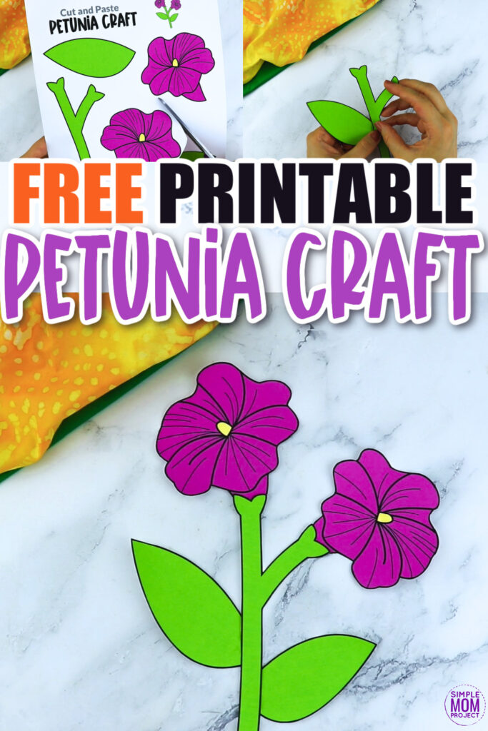 Are you looking for a fun petunia flower craft to do with your kids after you plant in your garden? This spring petunia flower template is a perfect craft to do with your kindergartners, preschoolers and toddlers this spring. Paint them, color them or turn them into a beautiful petunia flower greeting card!