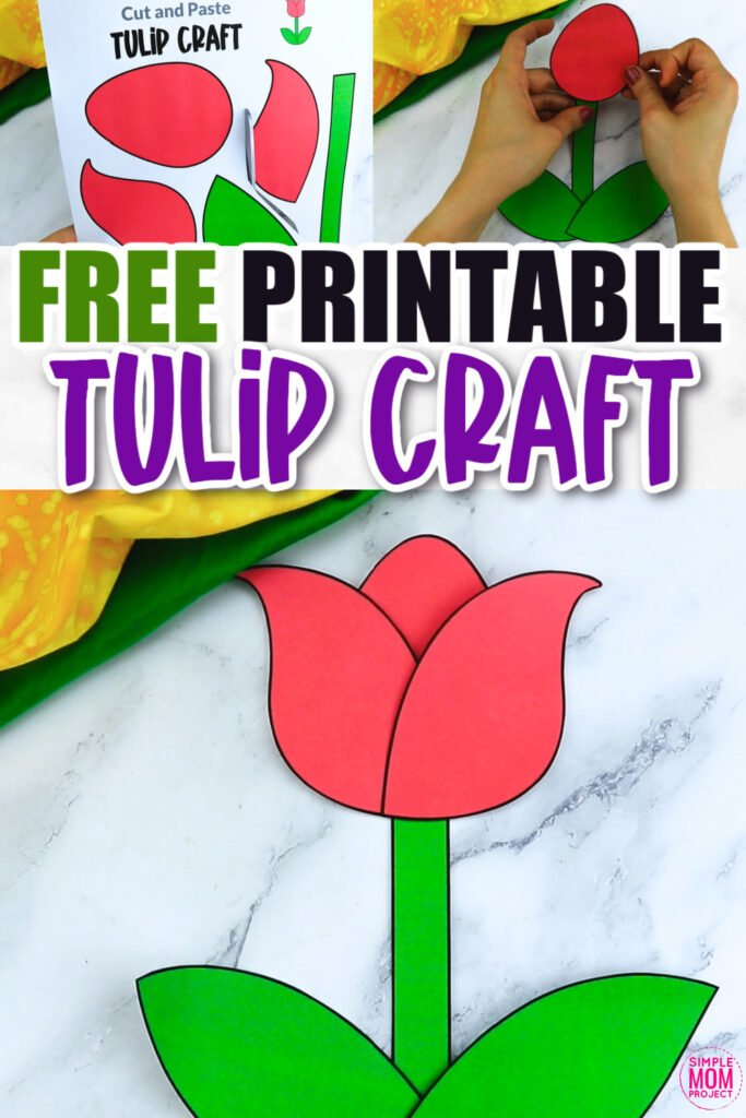 Are you looking for a step by step tulip craft to make with your preschool class? This easy flower tulip craft is great for handmade cards, teaching about the letter T and many other fun spring tulip activities. Click now to download and print your tulip craft template today!