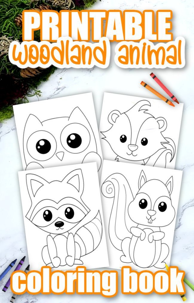 Printable Woodland Forest Animal Coloring Page Book for Kids Preschoolers Toddlers and kindergartners