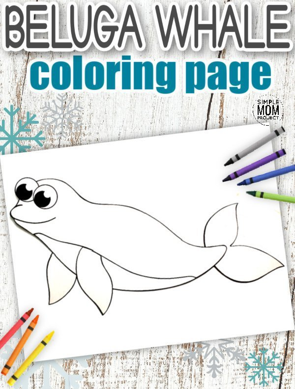 Download Printable Simple Arctic Animal Beluga Whale Coloring Page for kids preschoolers and toddlers