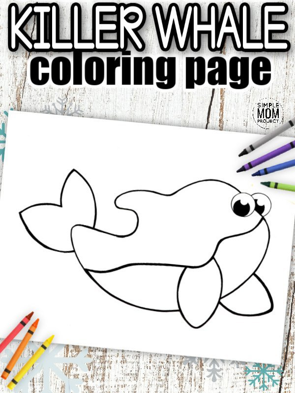 Download Printable Simple Arctic Animal Orca Coloring Page for kids preschoolers and toddlers