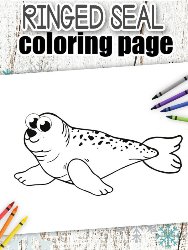 Download Printable Simple Arctic Animal Ringed Seal Coloring Page for kids preschoolers and toddlers