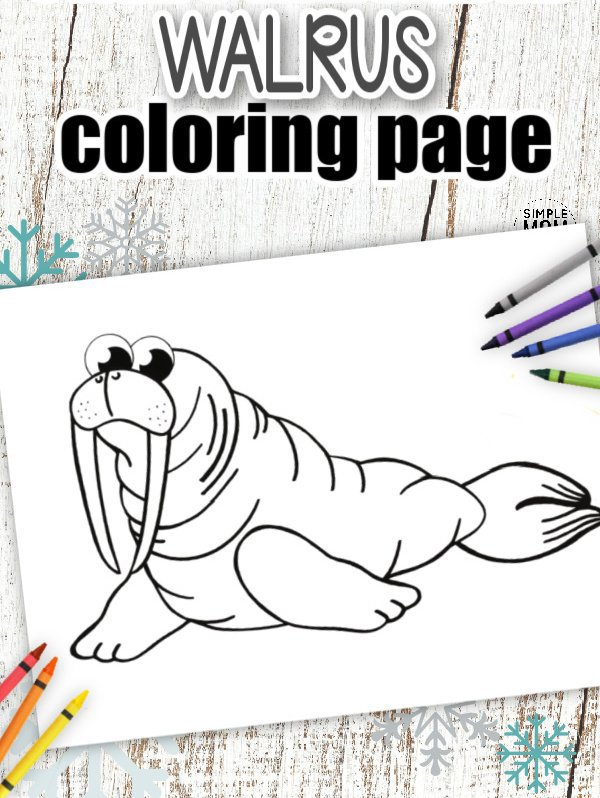 Download Printable Simple Arctic Animal Walrus Coloring Page for kids preschoolers and toddlers