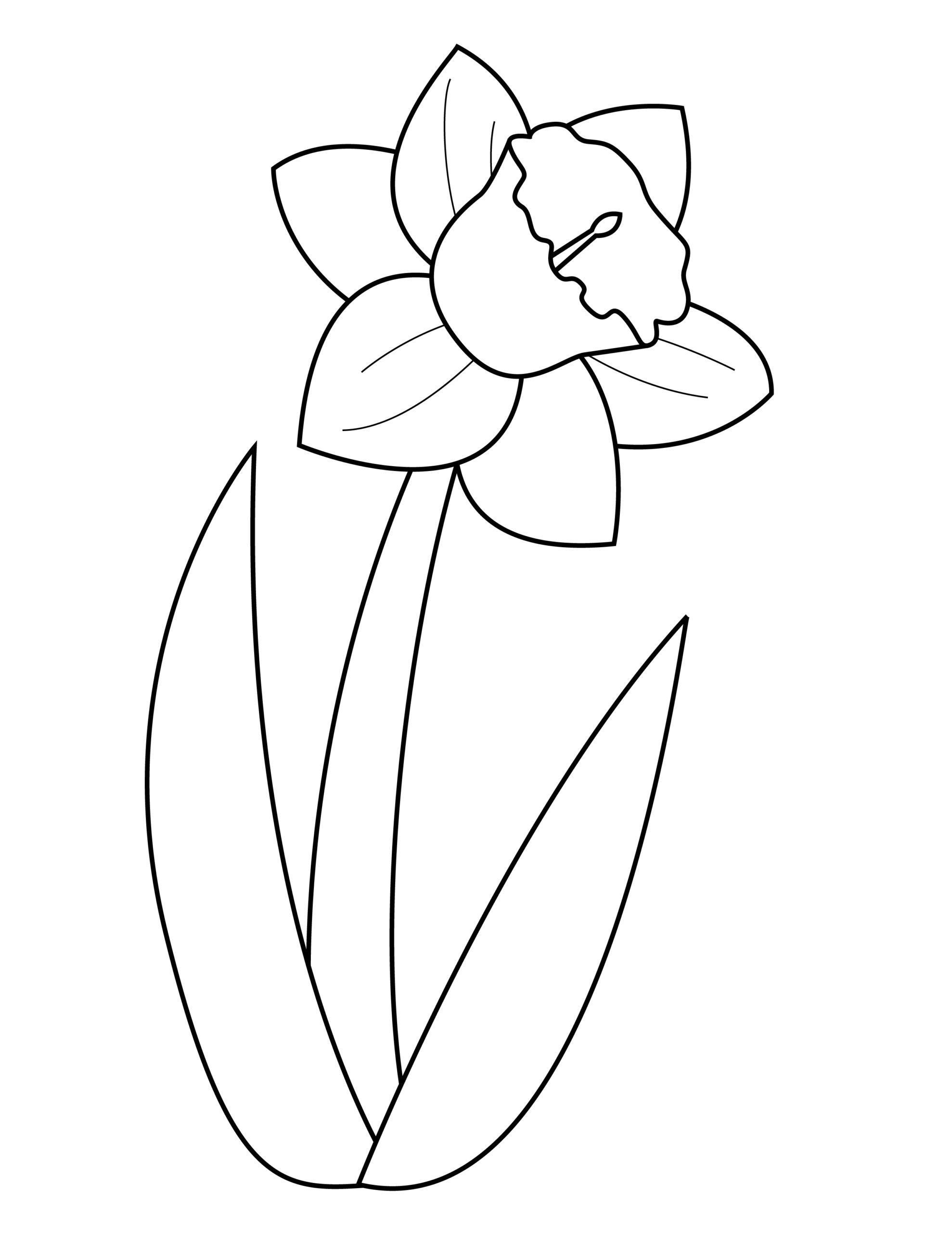 Printable daffodil template for summer template crafts for kids, preschoolers and toddlers