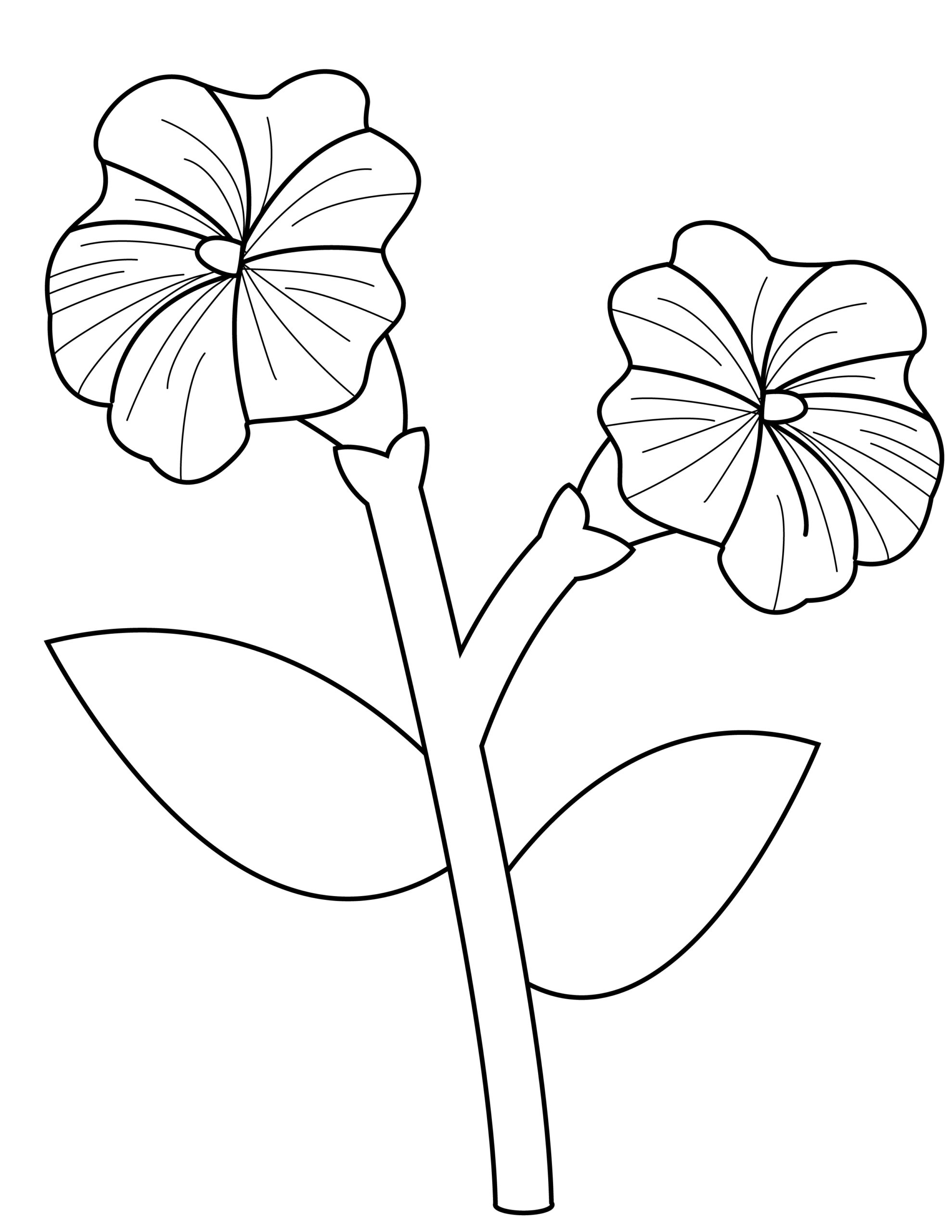 Printable petunia template for summer template crafts for kids, preschoolers and toddlers