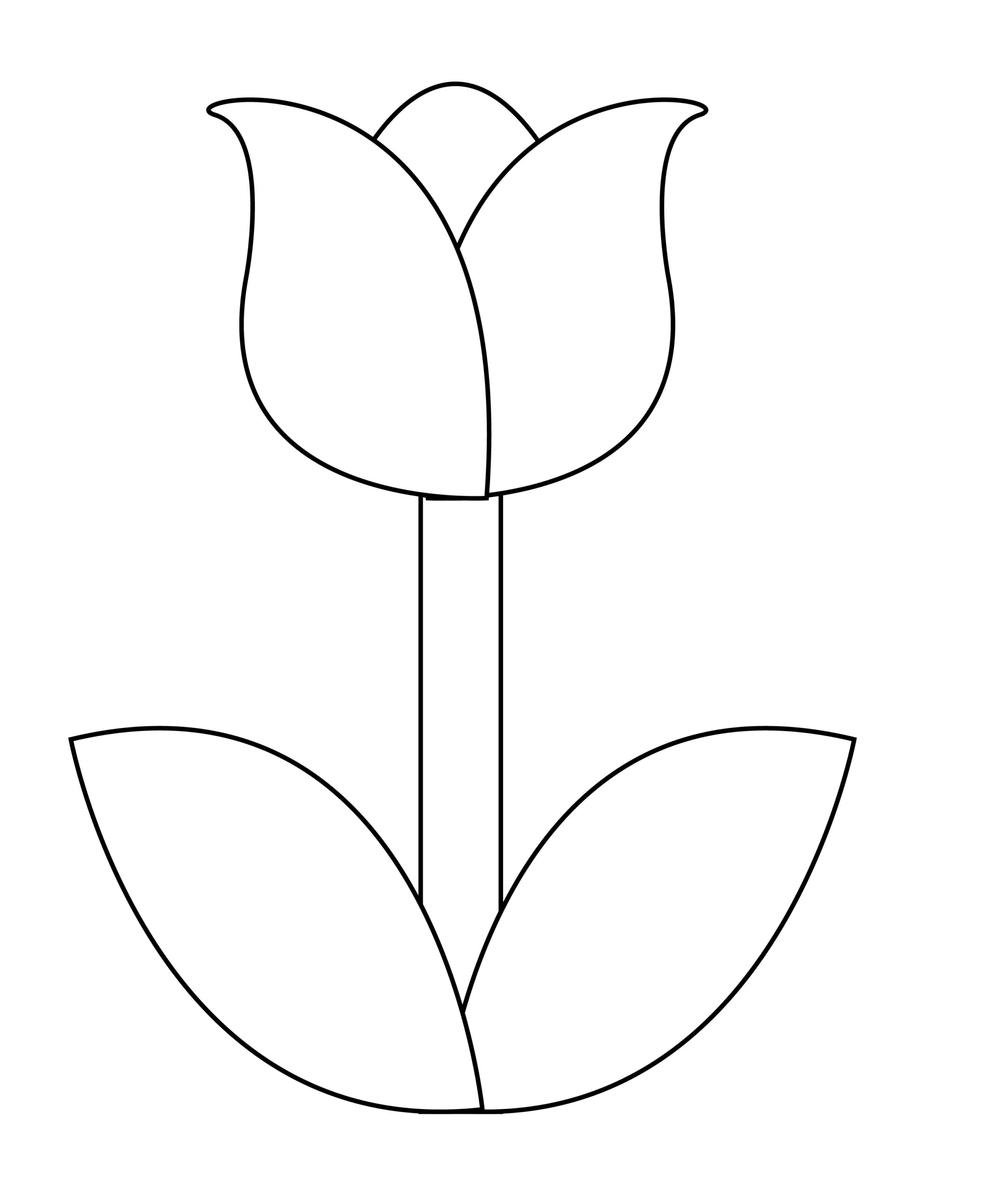 Printable tulip template for summer template crafts for kids, preschoolers and toddlers